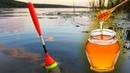 ЛОВЛЯ КАРАСЯ НА МЁД 👍 Рыбалка на красивом пруду ✔️ СИБИРИЯ
