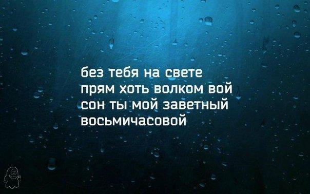 https://cs7050.vk.me/c7001/v7001702/1485f/g3XpTK3r890.jpg