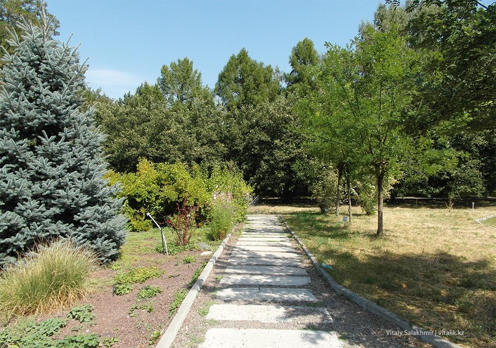 Тротуарная плитка внутри Ботанического сада Алматы 2018