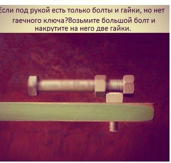 d1WnsQiRIQ0.jpg