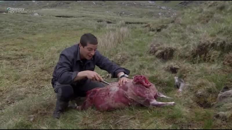 Выжить любой ценой 3 сезон 3 серия Ирландия