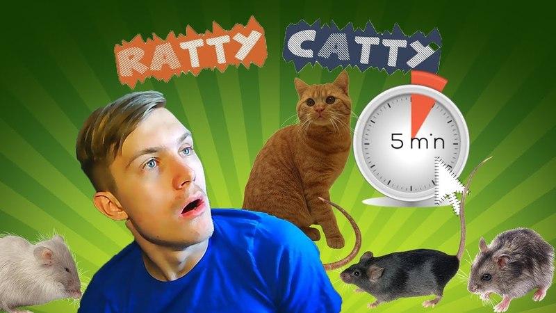 5 МИНУТ НА МЫШЕЙ RATTY CATTY