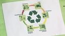 Жизнь пластиковых изделий