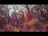 High Dose SHROOMS Trip Simulation (POV)  PSYCHEDELIC Forest Adventure