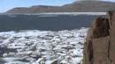 Дикий мир Киты во льдах Ice Whales 1999 Мир Животных Документальные фильмы Документальные ф