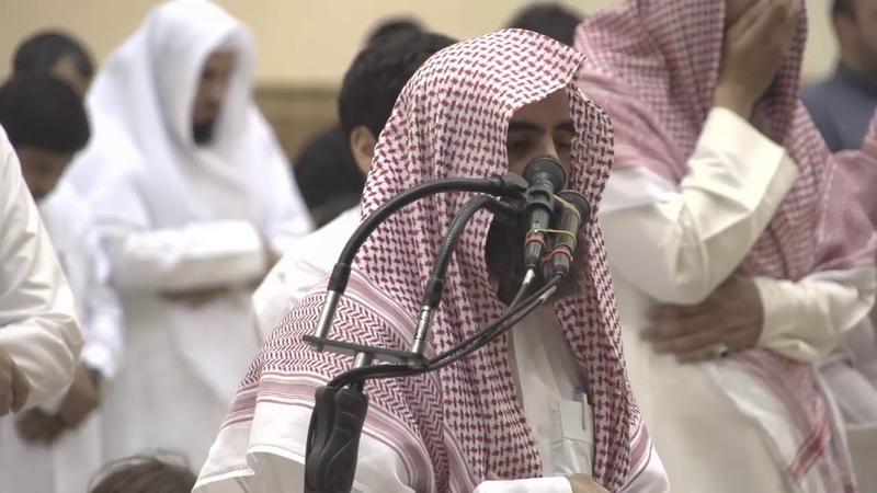 يَا لَيْتَهَا كَانَتِ الْقَاضِيَةَ~ محمد 15