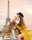 Девушка путешествует со своей хаски и делает потрясающие снимки