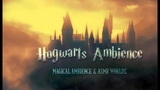 Hogwarts Ambience Harry Potter Castle Grounds ASMR Relaxing Ambient Fantasy White Noise