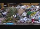 В Башкирии озвучат стоимость коммунальной услуги за сбор и вывоз твердых бытовых
