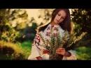 Горіла сосна, палала - Гарна українська пісня! Українські пісні Музика
