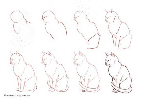 как нарисовать девушку кошку: