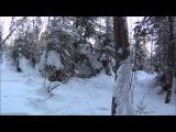 Небольшой поход с ночевкой в лес в январе, t ночью -33°С