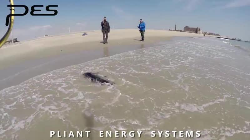 Робот амфибия умеет и плавать и бегать