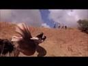 Ass blaster Terror bajo la tierra 3