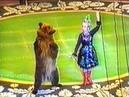 Нападение медведя на дрессировщика в цирке. Любительская съемка.