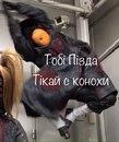 Анастасия Шевцова фото #38
