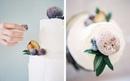 Как засахарить фрукты для украшения торта