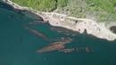 Кладбище военных кораблей на острове Русский в Приморье