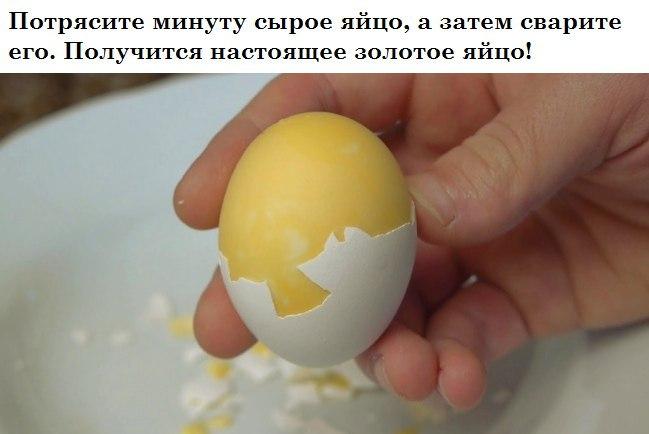 Варим золотые яйца