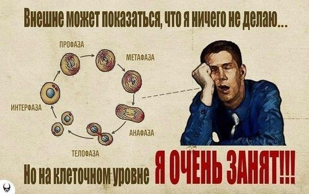 https://pp.vk.me/c617921/v617921751/163fa/fFkI4B96jWk.jpg