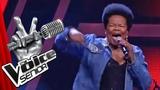 The Rolling Stones - Honky Tonk Women (Janice Harrington) The Voice Senior Audition SAT.1 TV