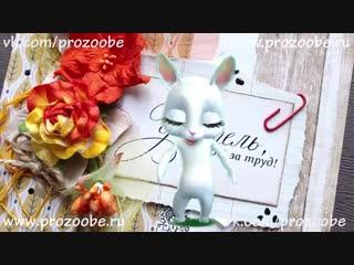 [v-s.mobi]Поздравление с днем учителя от Zoobe Зайки Домашней Хозяйки.mp4