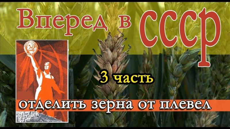 Вперёд в СССР! Зерна от плевел.3 часть.Волшебные формулы.