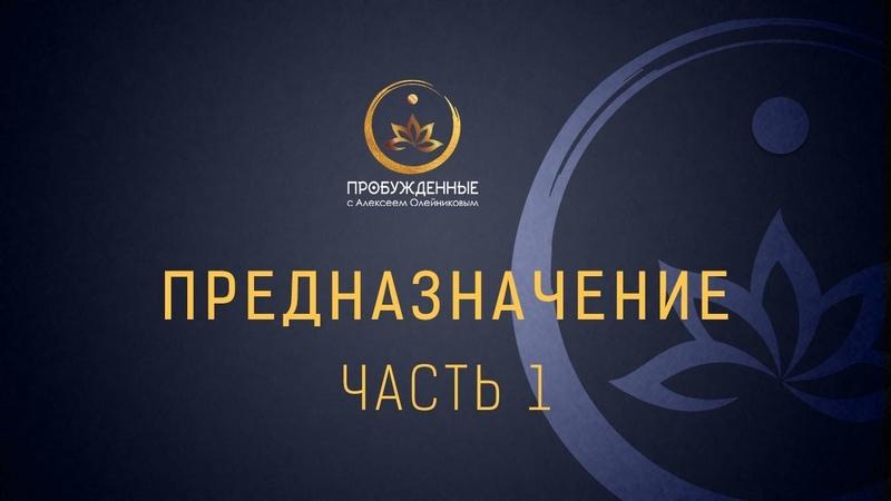 Алексей Олейников Как найти предназначение Диагностика Призвание Самореализация