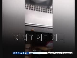 Тараканьи бега по прилавкам в продуктовом магазине в Приокском районе