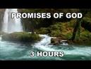 GOD'S PROMISES FAITH STRENGTH IN JESUS 3 HOUR LOOP