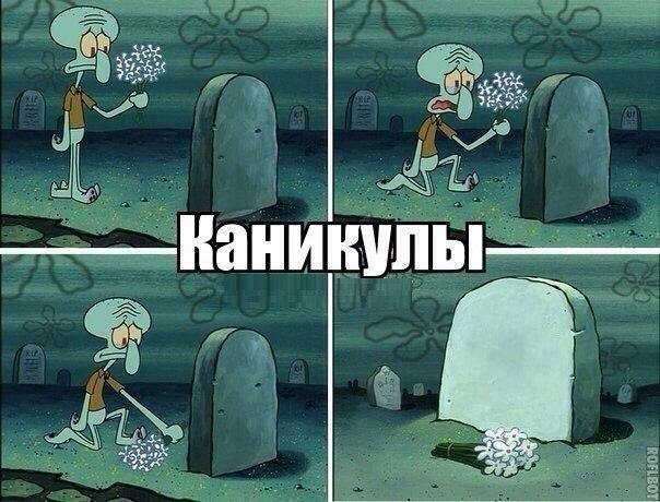 Фото №359739319 со страницы Максима Романова