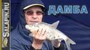 Рыбалка с фидером на дамбе Финского залива в проливной дождь salapinru