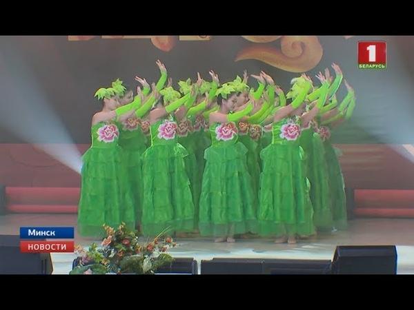 Китайские студенты МГЛУ устроили большой концерт в честь празднования Нового года