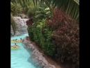 Водные покатушки Siam Park Тенерифе