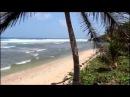 Карибские острова. пляжи Барбадоса. Barbados 2014-2015