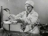 Эксперименты Брюхоненко и Чечулина (жизнь головы без тела)