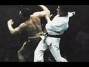 Кровавый бой боевые искусства Боло Янг 1989 год