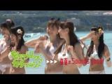 チームサプライズWEBムービー ラブラドール・レトリバー「ダンス」篇 ⁄ AKB48[公式]