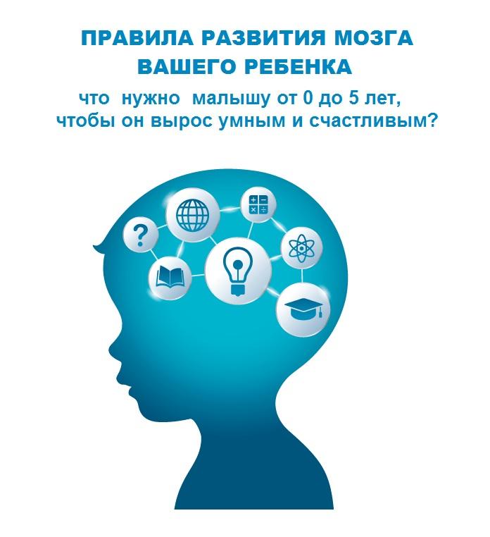 Правила развития мозга ребенка. Семинар для родителей