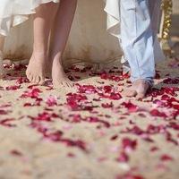 Свадебные мероприятия. Декор. Регистрация брака.