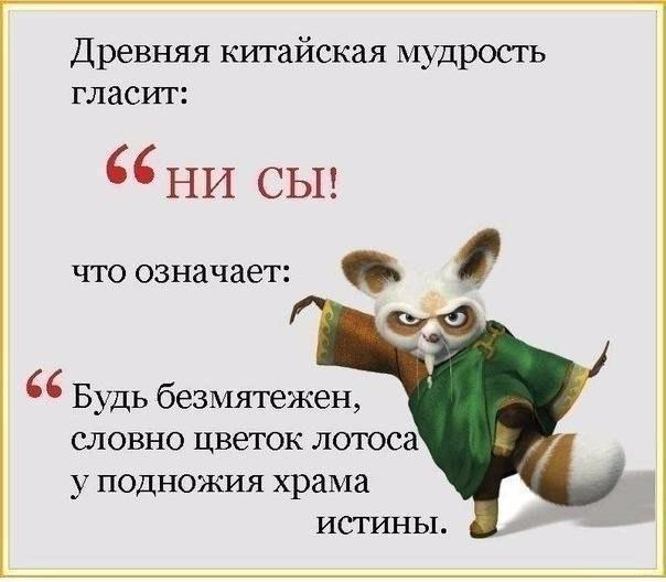 https://pp.vk.me/c7011/v7011345/50464/9LDq7V113Cg.jpg