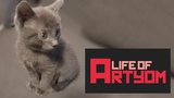 Life of Artyom