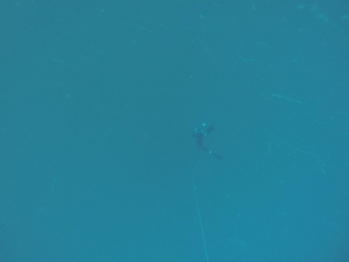 Фридайвинг. Греция. 25 метров. Иваницкий