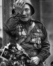 Анастасия Кожевникова фото #7