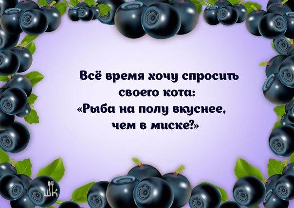 https://pp.userapi.com/c7010/v7010107/ac3e/jOSEBR9mGD8.jpg
