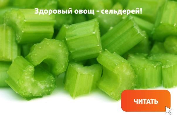 сельдерей — не только вкусный и низкокалорийный овощ, но и очень полезный. листья, корни, черешки, стебли — все это можно употреблять в пищу. сельдерей имеет особый аромат и обычно используется в качестве основы для салатов и полезных диетических