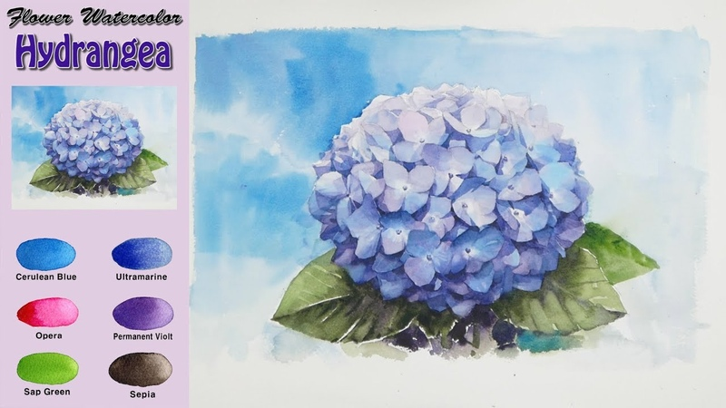 파란 수국 - 꽃 수채화 그리기 (wet-in-wet. Arches)[남일수채화] Hydrangea - Flower watercolor. NAMIL ART