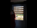Рулонные шторы Зебра день-ночь в коробом сверху и направляющими по бокам. Установлено на входную дверь.