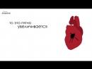 Как грехи влияют на сердце человека 720P HD 720p.mp4