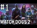 Watch dogs 2. Хакеры DedSec. Прогулка по парку | Прохождение | игры про хакеров